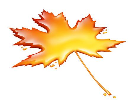 메이플 시럽 잎은 흰색 배경에 고립 된