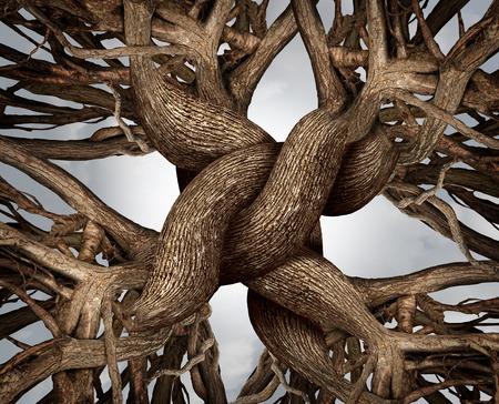 Símbolo unidade como um nó eterno de confiança feita a partir das raízes e troncos de árvores que crescem como um conceito de comunidade ou amizade negócio Imagens