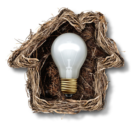 home owner: Home ideas and house solution symbol as a bird nest shaped as a family residence as a metaphor for real estate thinking or residential architecture icon.