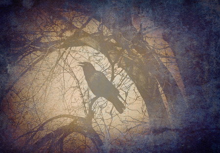 dangerouse: Scary crow on a tree branch concept calling and crowing in a mystical magical dark forest on a grunge old vintage background texture as a symbol for fear and mystery.