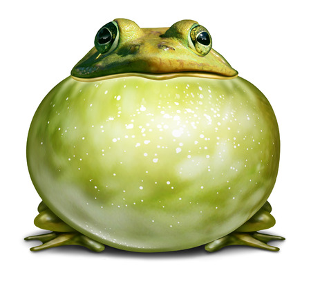 inflated: Healthy environment symbol as a green frog with an inflated throat as an ecological concept of communication with copy space for advertising a conservation message.