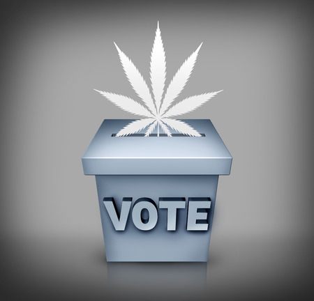 political and social issues: Marijuana election political issue on the vote ballot as a symbol for cannabis medical use or drug law legislation as a political subject during a campaign.