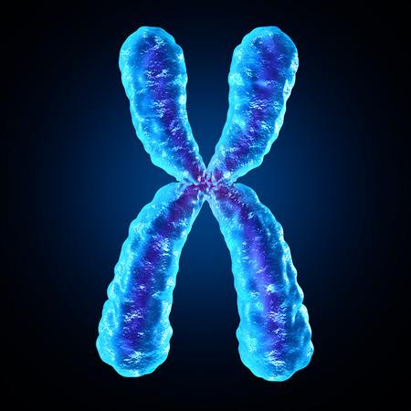 Chromosoom als de menselijke biologie x structuur met dna genetische informatie als een medische symbool voor gentherapie of microbiologie genetica onderzoek.