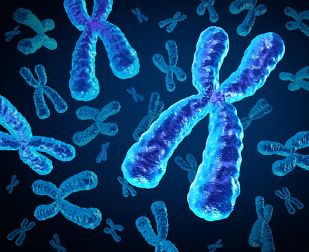 Chromosomes group as a concept for a human biology x structure containing dna genetic information as a medical symbol for gene therapy or microbiology genetics research.