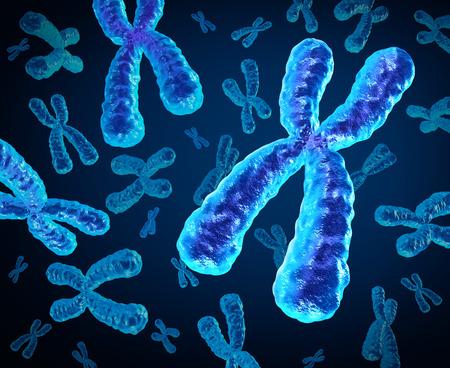 biologia: Cromosomas grupo como un concepto para un x estructura de la biología humana que contiene la información genética de la DNA como un símbolo médico para la terapia génica o la genética de microbiología investigación. Foto de archivo