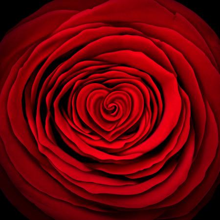 pasion: Concepto del amor subi� como un dise�o en forma de flor como un c�rculo con forma de coraz�n en el interior como s�mbolo e icono de san valent�n elemento rojo desear o expresi�n del d�a de madres de afecto y la pasi�n o el objeto de la boda.
