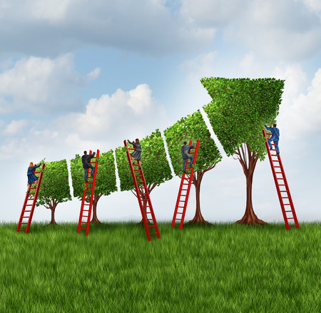 investing: People group investing and financial services business concept as a team of corporate workers and employees with businessmen and businesswomen on a red ladder caring for trees shaped as a finance chart arrow going up.