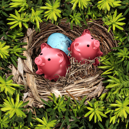 secure: Savings nest and secure investment financial concept as a group of pink piggy banks and a bird egg in a safe tree refuge as a wealth and retirement fund symbol.