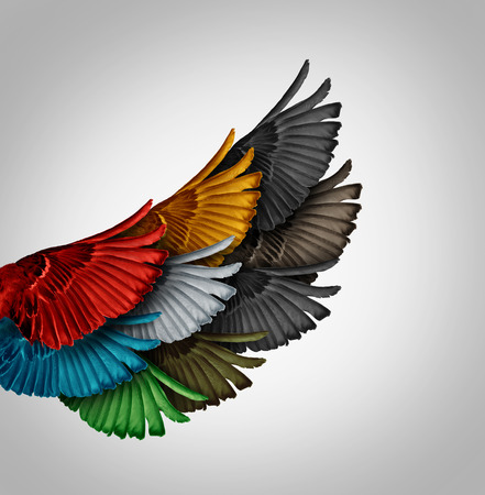 coming together: Alliance concept and working together business idea as a diverse group of bird wings coming as one to form a giant powerful wing as a synergy metaphor for cooperation success and employee support. Stock Photo