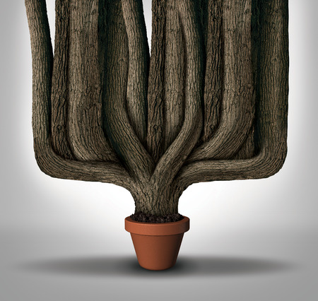achievement concept: Exceed expectations business concept or maximum potential and outperform metaphor as a small flower pot with a giant expanding tree trunks growing with limited resources.
