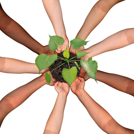 group cooperation: Community collaboration and cooperation concept and social crowdfunding investment symbol as a group of diverse hands organized in a circular formation nurturing a growing sapling tree as people coming together for success.