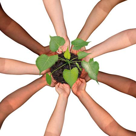 Gemeenschap samenwerking en samenwerking concept en de sociale crowdfunding investering symbool als een groep diverse handen georganiseerd in een cirkelvormige formatie voeden een groeiende boompje boom als mensen samen komen voor succes. Stockfoto