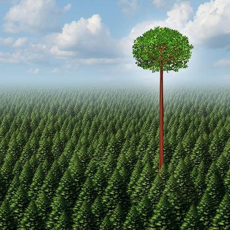 Heben Sie sich von der Masse-Konzept als ein Wald von immergrünen Bäumen mit einem erfolgreichen Blatt Baum hoch über der Konkurrenz als Business-Metapher für Individualität und unterschiedliche individuelle Unterscheidung als Außenseiter gedeihen.