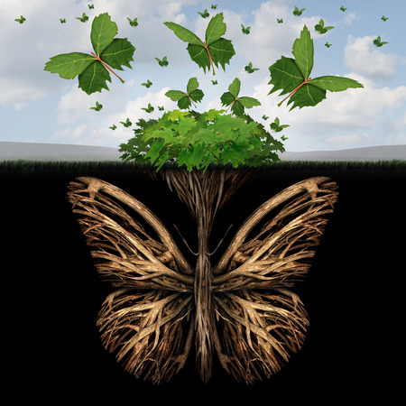 Strong foundation concept as the roots of a plant shaped as a butterfly and the leaves of a bush in the shape of flying butterflies as a creative base symbol and the power of freedom and imagination. Stock Photo