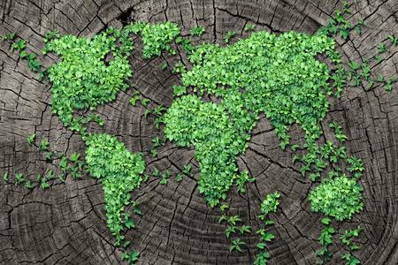 Concepto de difusión mundial y el desarrollo como un concepto de negocio con un mapa del mundo hecho de un grupo organizado de vid persistente hojas que crecen en un tronco de árbol muerto como un símbolo de la conservación del medio ambiente y el icono de la renovación.