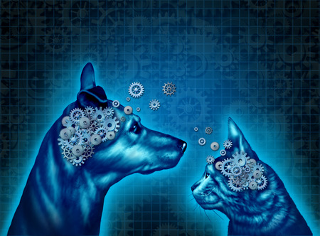 pets: Pet psychology and understanding and communicating with pets as a dog and a cat with gears and cog wheels shaped as an animal brain as a medical metaphor and symbol for pet behavior training and mental health in domestic animals.