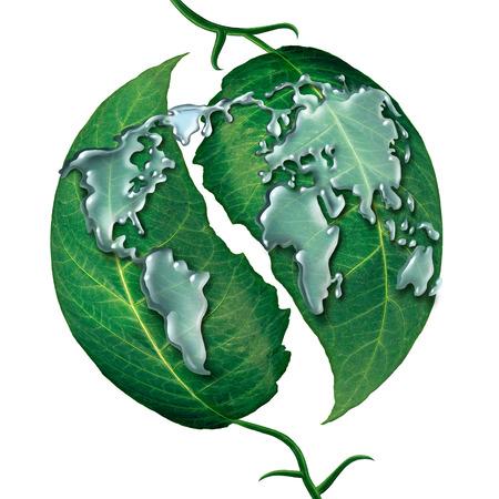 mapas conceptuales: Hoja Mundial concepto de gota de agua como un grupo de gotas de lluvia en forma de líquidos como el mapa de la earrth en las hojas verdes como símbolo y metáfora de la protección de la ecología o global del agua limpia aislada sobre un fondo blanco. Foto de archivo