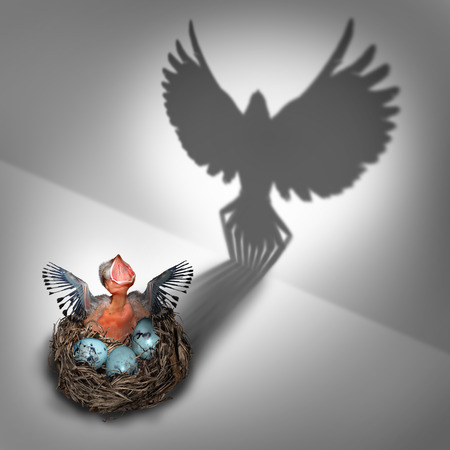 cast off: Future potential or genesis concept as a hatchling baby bird in a nest coming out with a cast shadow of a feathered flying adult rising and taking off with large open wings as a business metaphor and life success symbol.