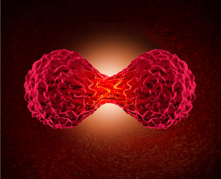 celulas humanas: C�ncer de c�lulas dividiendo concepto como un ciclo celular microsc�pico de replicaci�n o divisi�n de las c�lulas cancerosas malignas en el cuerpo humano como un s�mbolo m�dico y oncolog�a cuidado de la salud para el crecimiento tumoral peligroso. Foto de archivo