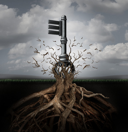 powerful: Solution concept as an old generic key emerging out of a tree as a businessmetaphor for the power of innovation direction and research discovery success.