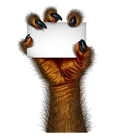 loup garou: Werewolf main tenant un signe carte vierge comme une créature rampante pour halloween ou le symbole effrayant avec la peau velue et texturé texturé avec maudits doigts loup monstre sur un fond blanc.