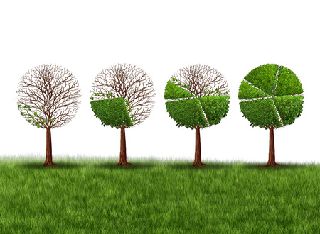 Economy prosperity and economic success financial concept as a group of green trees shaped as growing finance pie chart as a metaphor for gradual gains in company stock or competitive wealth gain on a white background. Standard-Bild