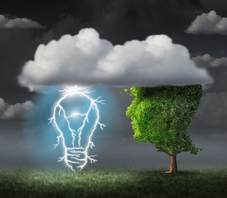 lightbulb: Business idea concept as a tree shaped as a face under a cloud with an electric lightning bolt in the shape of an illuminated lightbulb as a metaphor for creative inspiration and success. Stock Photo