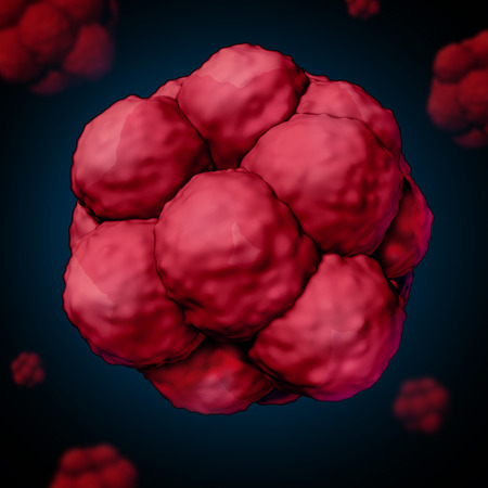 Stem cell or stemcell concept as a three dimensional illustration of biological cells that divide through mitosis found in humans and other mammals as a medical science and healthcare research symbol for potential stem cell therapy.