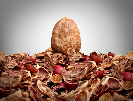 metaphoric: Tough nut to crack business concept as a solid hard closed walnut on top of a mountain of broken nut shells as a metaphor for difficulty solving a problem or difficult person symbol as a metaphoric icon for tenacity and indiiduality.