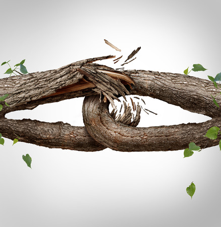 Broken chain concept and disconnected symbol as two different tree trunks tied and linked together as weak fragile,links breaking and losing trust or faith metaphor as separation and divorce or broken relationship.