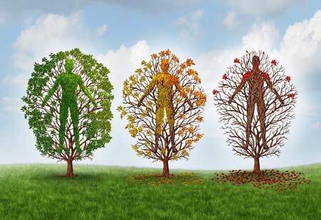 cuerpo humano: Concepto de envejecimiento humano y el deterioro de la salud debido a la enfermedad en el cuerpo como una forma como una persona cambiante color de la hoja y la pérdida de hojas como la asistencia sanitaria y la metáfora médica para pérdida por deterioro y la función árbol verde saludable.