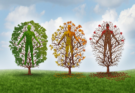 Human aging concept and deterioration of health due to disease in the body as a healthy green tree shaped as a person changing leaf color and losing leaves as a healthcare and medical metaphor for impairment and function loss.