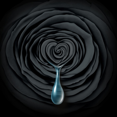 Sad rose concept as a black dark flower with a heart shape crying a teardrop or tear drop as a sadness symbol or emotional grief icon or divorce and love heartbreak idea.