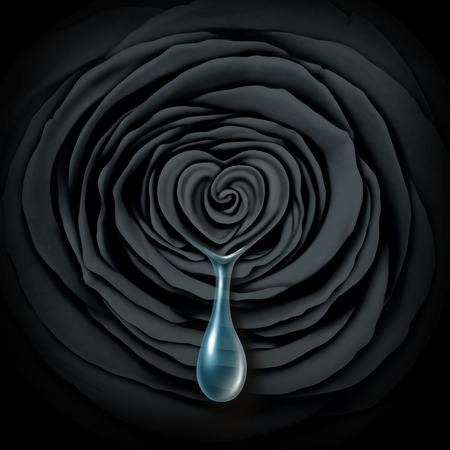 Verdrietig steeg concept een zwarte donkere bloem met een hart vorm huilen een traan of een traan als een symbool van verdriet of emotionele verdriet pictogram of echtscheiding en liefde heartbreak idee. Stockfoto