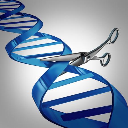 biologia: Gen concepto de cuidado de la salud de edici�n como tijeras moleculares cortar una cadena de ADN como un s�mbolo de la ciencia m�dica y la tecnolog�a de la biolog�a para el cambio de material gen�tico para ayudar a curar enfermedades.