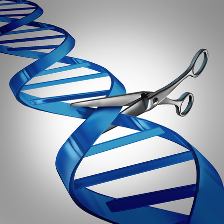 scissors: Gene editing health care concept as molecular scissors cutting a dna strand as a medical science and biology technology symbol for changing genetic material to help cure disease.
