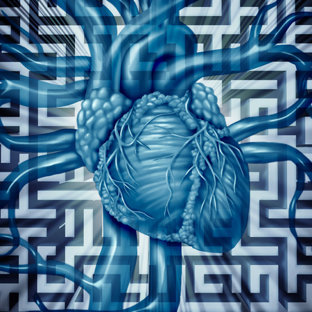 with aorta: Heart challenge human cardiovascular problems concept on a maze or labyrinth as cardiac dangers of an unhealthy organ risk for medical blood circulation resulting in a heart attack. Stock Photo