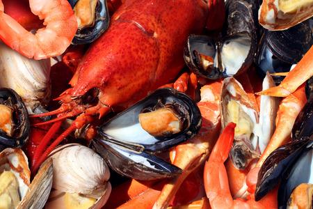 gamba: Placa de Mariscos de mariscos crustáceos como la langosta fresca al vapor almejas mejillones camarones y cangrejo como una cena gourmet fondo del océano. Foto de archivo