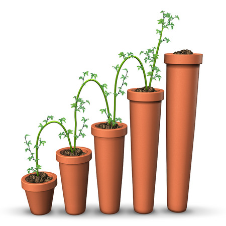 increment: Growth success business concept  Stock Photo