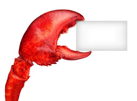 Lobster claw holding a blank card sign as a fresh seafood message or shellfish food concept with a red shell crustacean isolated on a white background. Standard-Bild