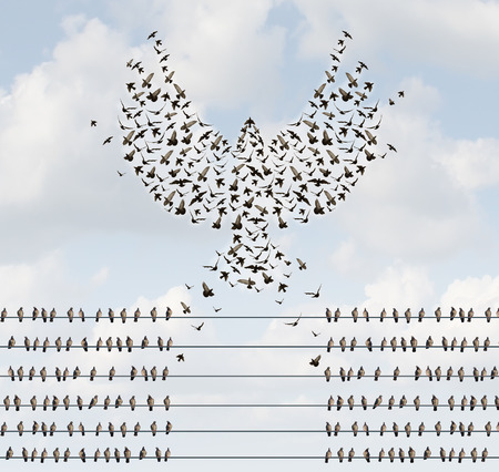 unity: Successful organization business concept as a group of birds on a wire with a team flying away and forming a flying bird shape with open wings as a metaphor for courage to create new opportunities. Stock Photo
