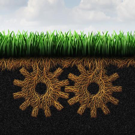 Apoyo o la raíz de hierba de Base concepto y locales símbolo de la acción comunitaria como símbolo organización social política con raíces formadas como engranajes o ruedas dentadas conectadas como un icono de la sociedad menor ayuda clase. Foto de archivo