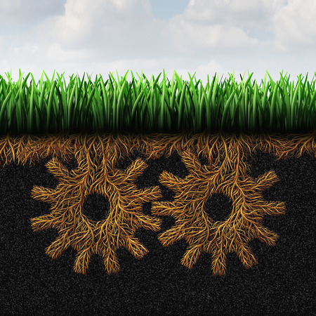 grassroots: Grassroots support or grass root concept and local community action symbol as a political social organization symbol with roots shaped as gears or connected cog wheels as an icon of lower class society help.