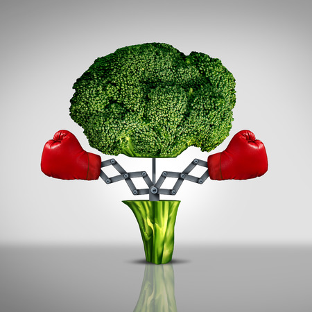 Superfood protection health care concept and cancer disease fighting food symbol as a healthy natural nutrition icon with red boxing gloves emerging out of an open broccoli vegetable as a fitness diet metaphor.