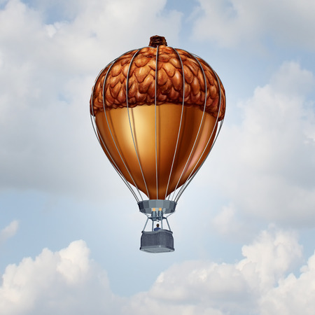 metaphor: Investment rise and growth concept as an acorn nut shaped as an air balloon as a financial business metaphor for rising economy and investing success.