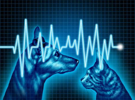 Pet opieki zdrowotnej i ubezpieczeń medycznych dla koncepcji zwierzętami jako ilustracja psa i kota z EKG lub monitora ekg zycie jako symbol weterynaryjnych i weterynaryjnych usług lekarskich.