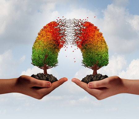 breaking off: Partnership crisis concept as two people holding connected trees that are decaying in the middle as a business relationship or social issue symbol for separation and team disagreement. Stock Photo