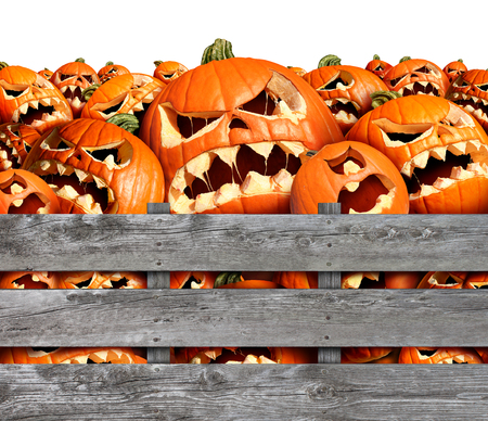 jack in a box: Halloween pumpkin Harvest as a group of scary carved jackolantern monsters in a wood box or farm bin as a concept and symbol for a creepy advertisement and marketing announcement for a harvesting time party.