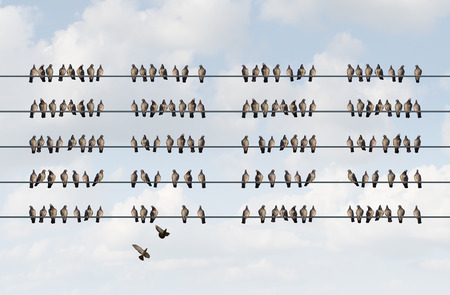 group strategy: Group management business concept as a cluster of birds on a wire in the shape of organized aligned pattern as a metaphor for staff and company coordination planning and managing employee strategy.