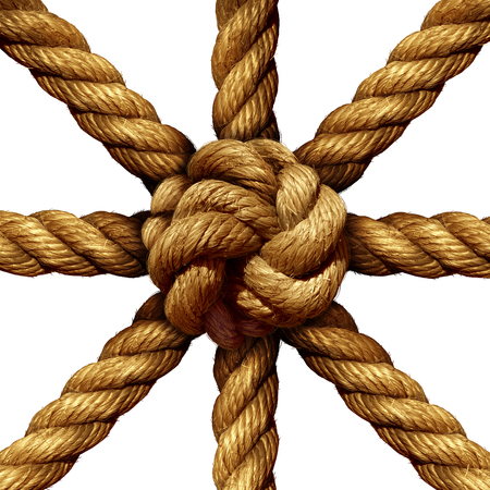 coming together: Connected Group business concept and unity symbol as a collection of thick ropes coming together tied in a knot at the center as a symbol for network strength and unity support isolated on a white background. Stock Photo